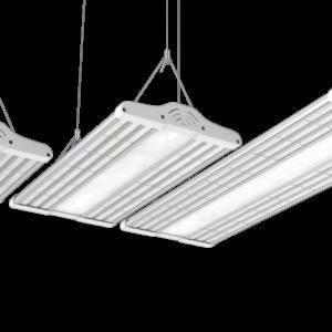 LED valgus
